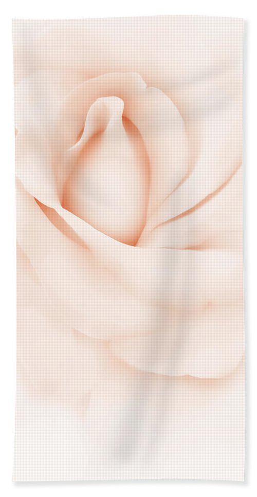 Rose Beach Towel featuring the photograph Delicate Peach Rose Flower by Jennie Marie Schell