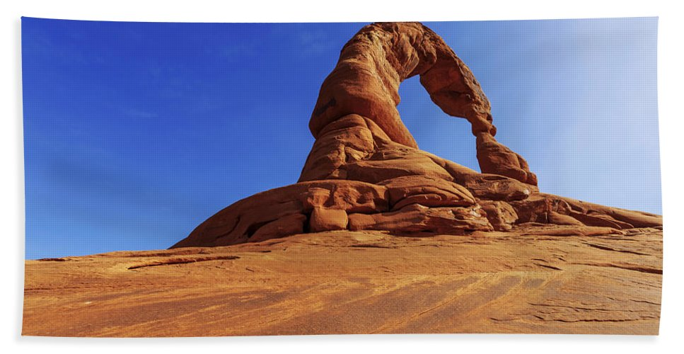 Nature Beach Towel featuring the photograph Delicate Perspective by Chad Dutson