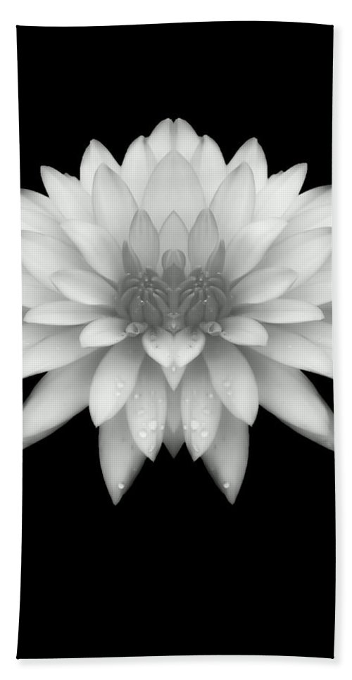 Delicate Beach Towel featuring the photograph Delicate White Petals by Heather Joyce Morrill