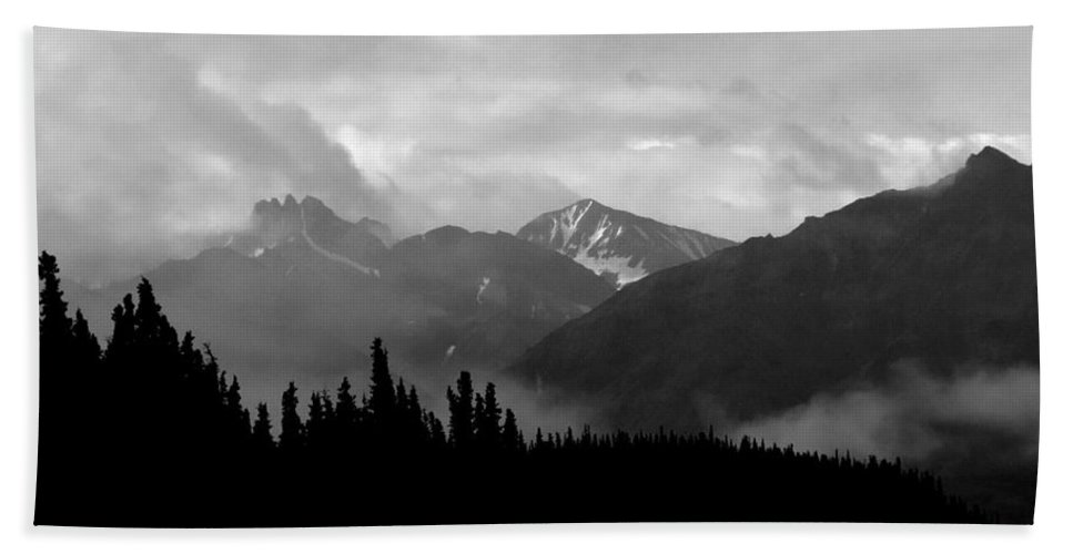 Alaska Beach Towel featuring the photograph Denali National Park 1 by Dick Goodman