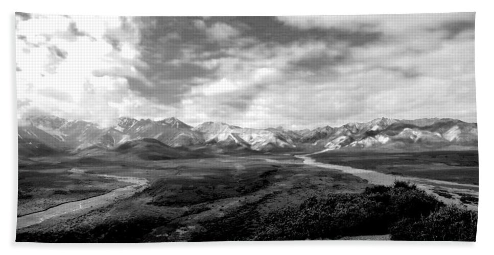 Alaska Beach Towel featuring the photograph Denali National Park 4 by Dick Goodman