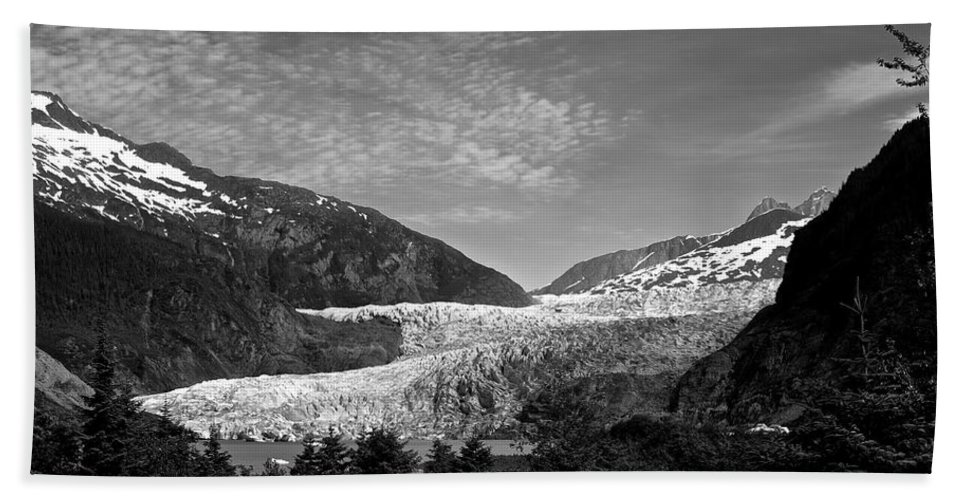 Alaska Beach Towel featuring the photograph Denali National Park 6 by Dick Goodman