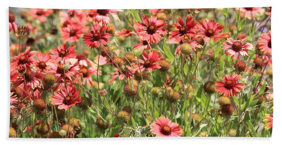 Flowers Beach Towel featuring the photograph Desert Beauties by Carol Groenen