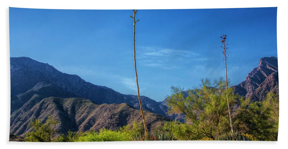 Art Beach Towel featuring the photograph Desert Flowers In The Anza-borrego Desert State Park by Randall Nyhof