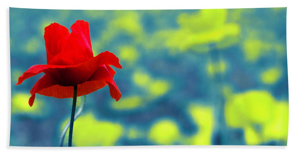 Poppy Beach Towel featuring the photograph Different by Wolfgang Stocker