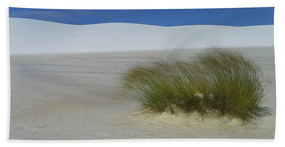 Dither Beach Towel featuring the photograph Dither by Skip Hunt