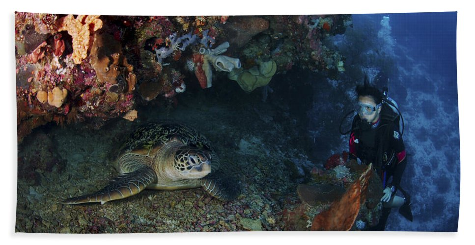 Diver Beach Towel featuring the photograph Diver And Sea Turtle, Manado, North by Mathieu Meur
