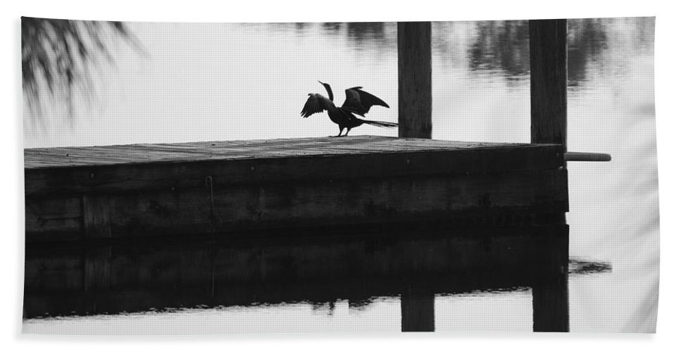 Black And White Beach Towel featuring the photograph Dock Bird Pre Flight by Rob Hans