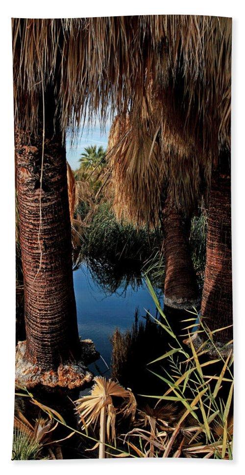 Oasis Beach Towel featuring the photograph Dos Palmas Oasis by David Salter