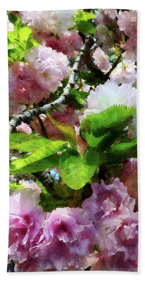 Cherry Blossom Beach Towel featuring the photograph Double Cherry Blossoms by Susan Savad