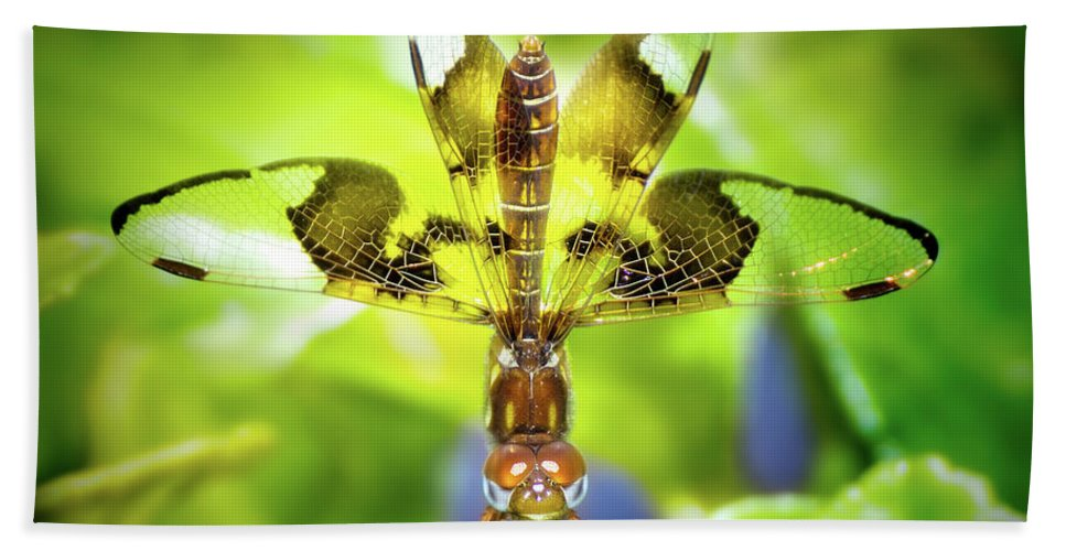 Dragonfly Beach Towel featuring the photograph Dragonfly Design by Mark Andrew Thomas