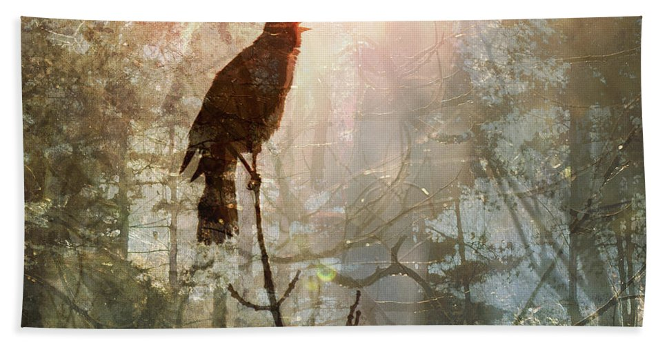 Animal Beach Towel featuring the digital art Dreamcatcher by Will Jacoby Artwork