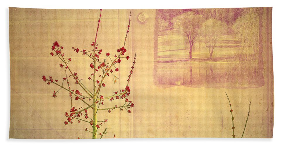 Weeds Beach Towel featuring the photograph Dreaming Beyond Doors by Tara Turner