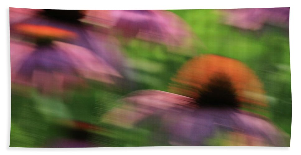 Coneflowers Beach Towel featuring the photograph Dreaming Of Flowers by Karol Livote