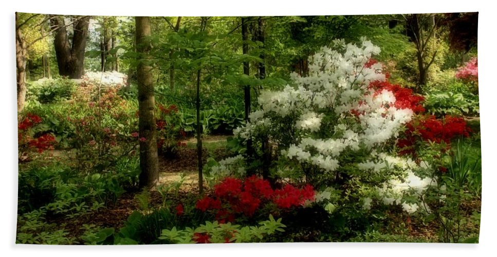 Spring Beach Towel featuring the photograph Dreaming Of Spring by Sandy Keeton