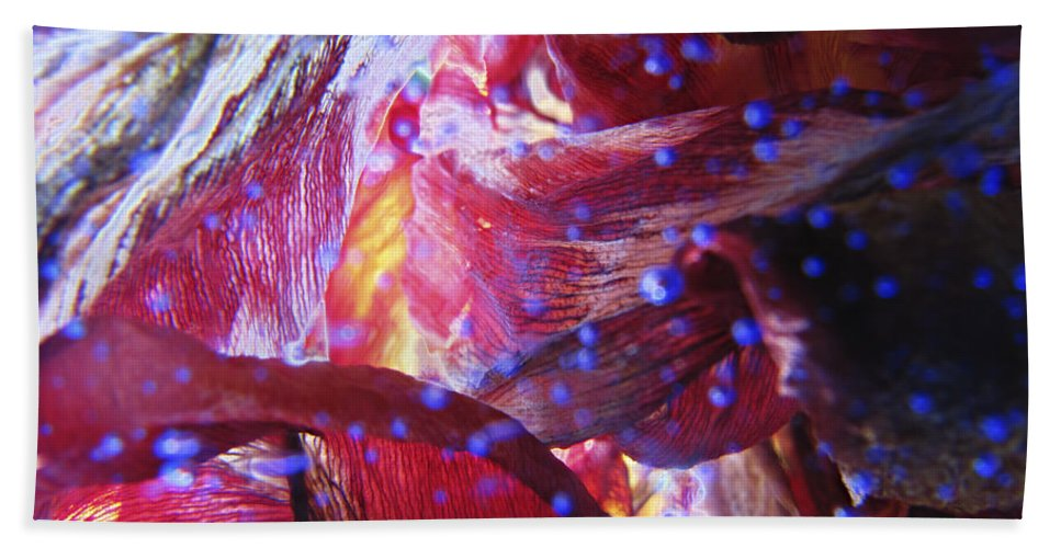 Dream Beach Towel featuring the photograph Dreamscape-2 by Casper Cammeraat