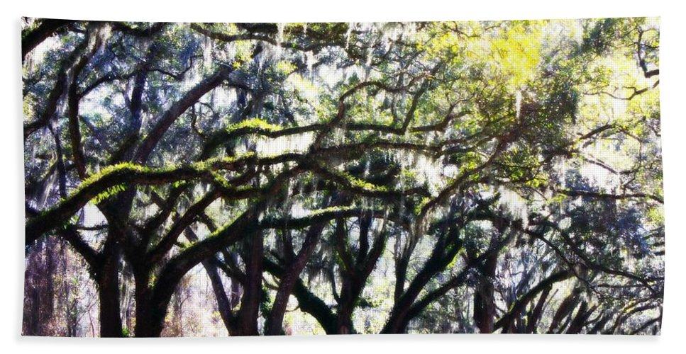 Live Oak Trees Beach Towel featuring the photograph Dreamy Live Oaks by Carol Groenen