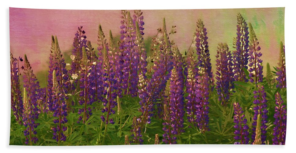 Lupin Beach Towel featuring the photograph Dreamy Lupin by Deborah Benoit