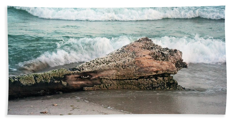 Driftwood Beach Towel featuring the photograph Driftwood by David Campbell
