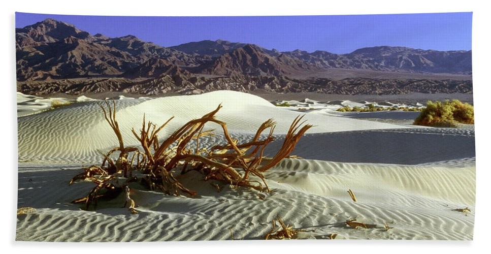 Sand Beach Towel featuring the photograph Driftwood Dune by Jim And Emily Bush