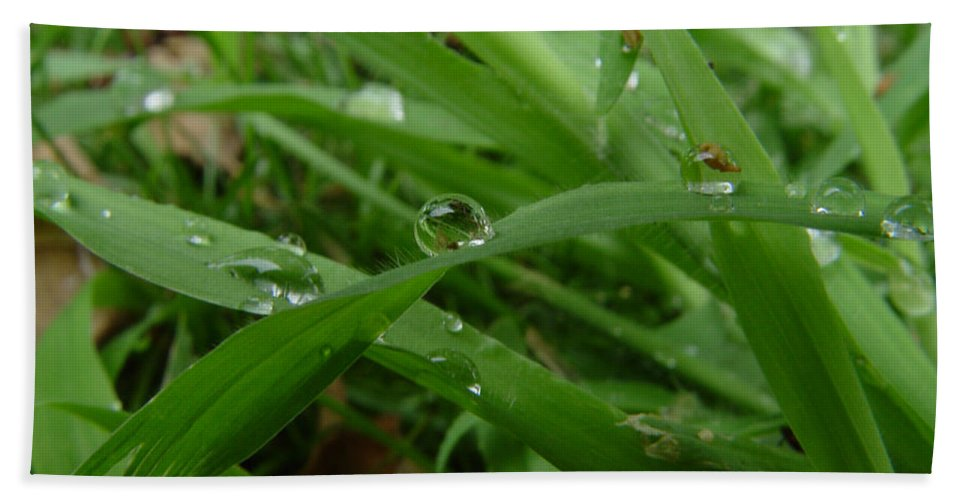 Water Droplet Beach Sheet featuring the photograph Droplets 01 by Peter Piatt