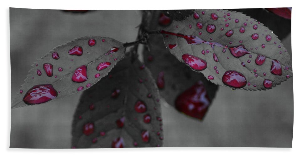 Leaf Beach Towel featuring the photograph Drops Of Color 2 by Maggie Cersosimo