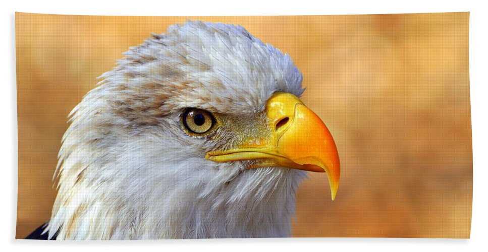 Eagle Beach Towel featuring the photograph Eagle 7 by Marty Koch