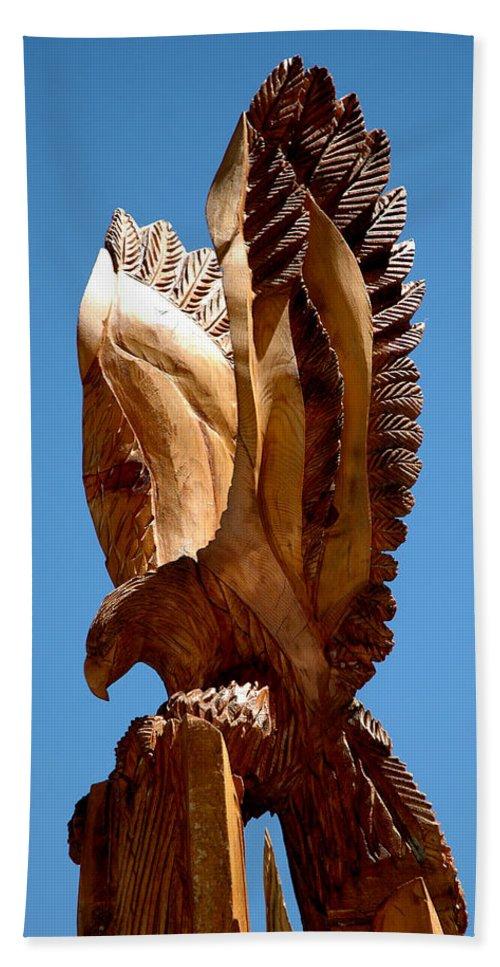 Usa Beach Towel featuring the photograph Eagle Has Landed by LeeAnn McLaneGoetz McLaneGoetzStudioLLCcom