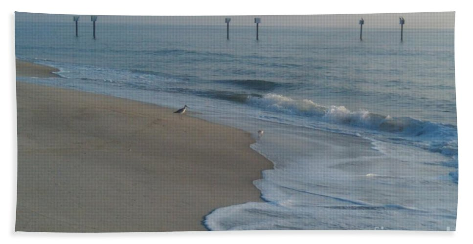 Morning Beach Towel featuring the photograph Early Bird by Bev Veals