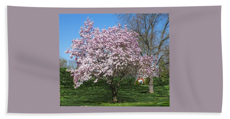 Tree Beach Towel featuring the photograph Early Blooms by Elly Potamianos