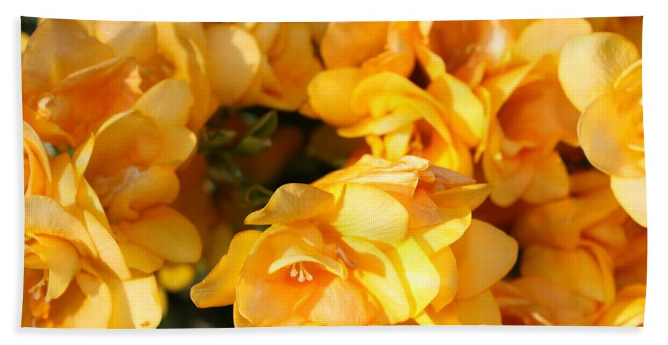Spring Garden Beach Towel featuring the photograph Easter Beauties by Carol Groenen