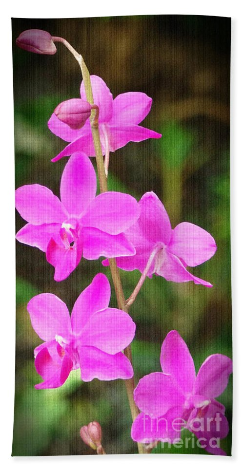 Orchid Beach Towel featuring the photograph Elegance In Nature by Sue Melvin