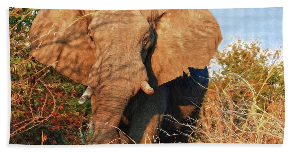 Elephant Beach Towel featuring the photograph Elephant On Approach by Kay Brewer