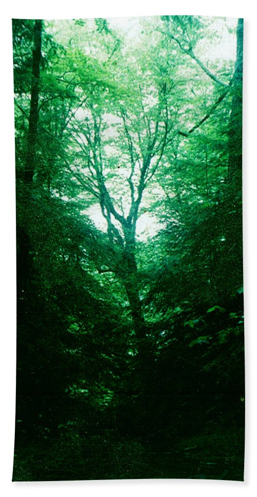 Emerald Beach Towel featuring the photograph Emerald Glade by Seth Weaver