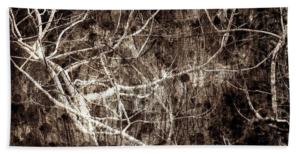 Tree Beach Sheet featuring the photograph Endless by Gaby Swanson