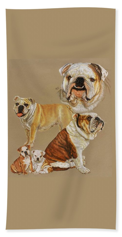 Purebred Beach Towel featuring the drawing English Bulldog by Barbara Keith