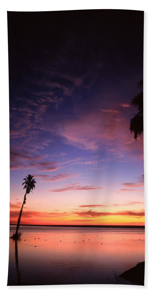 Mexico Beach Towel featuring the photograph Estuary At San Jose Del Cabo by John Harmon