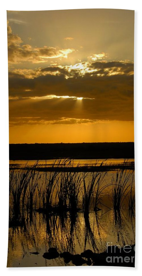 Everglades National Park Florida Beach Sheet featuring the photograph Everglades Evening by David Lee Thompson