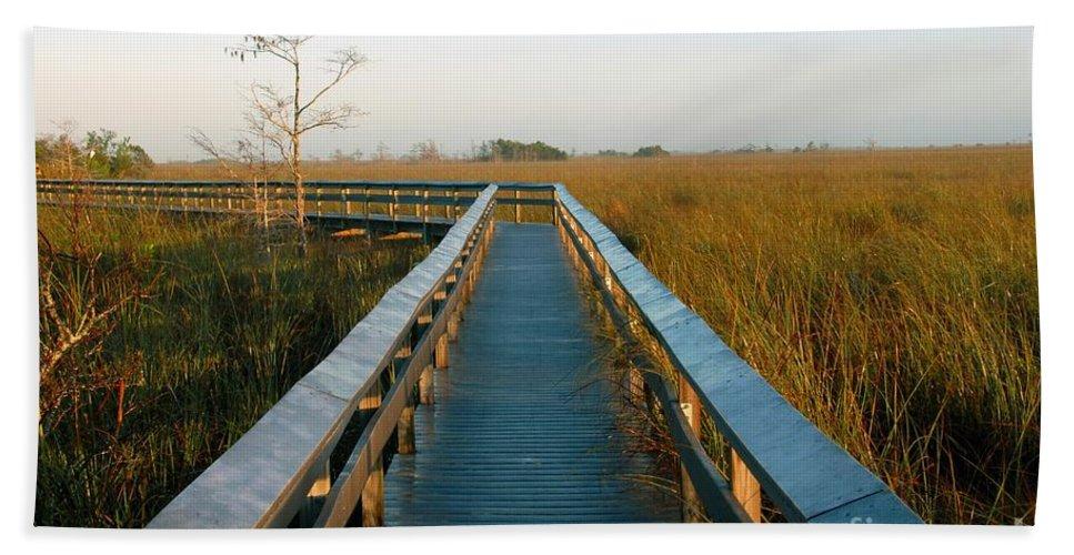 Everglades National Park Florida Beach Towel featuring the photograph Everglades National Park by David Lee Thompson