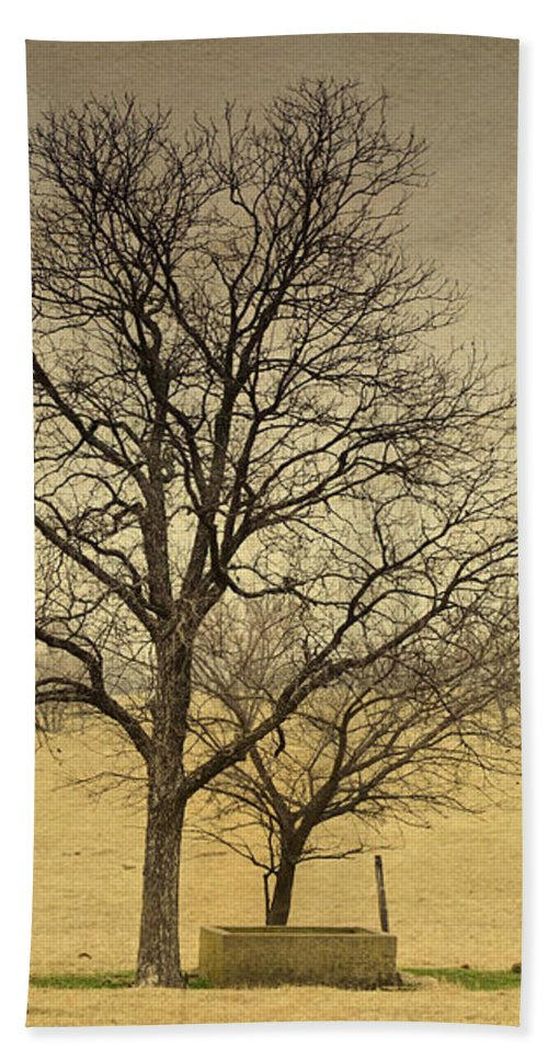 Cement Beach Towel featuring the photograph F O U N D A T I O N S by Charles Dobbs