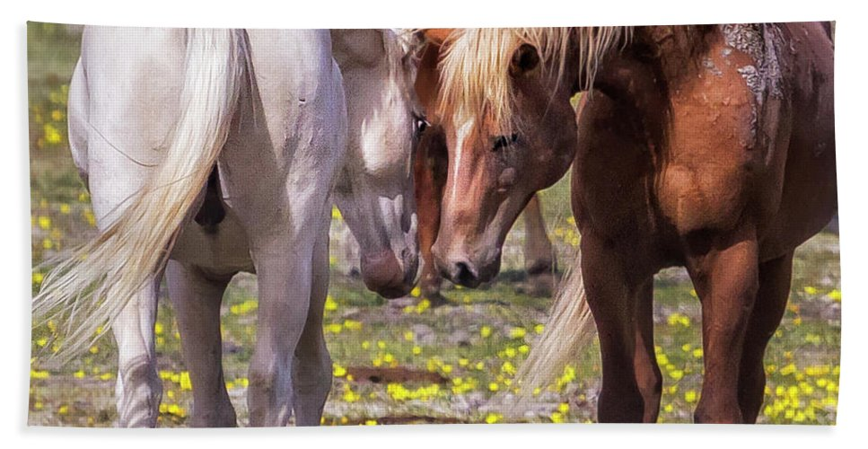 Wildhorses Beach Towel featuring the photograph Face Off by Belinda Greb