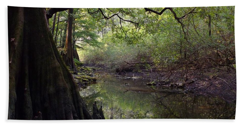 Fairy Tale Beach Towel featuring the photograph Fantasy Forest by Julie Pappas