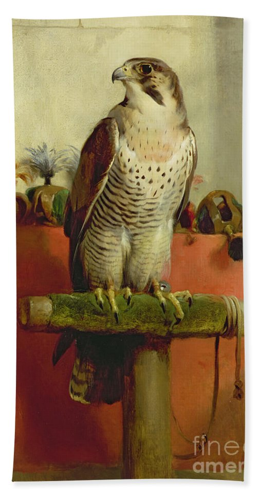 Falcon Beach Towel featuring the painting Falcon by Sir Edwin Landseer