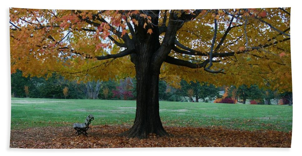 Maymont Beach Towel featuring the photograph Fall At Maymont by Tina Meador