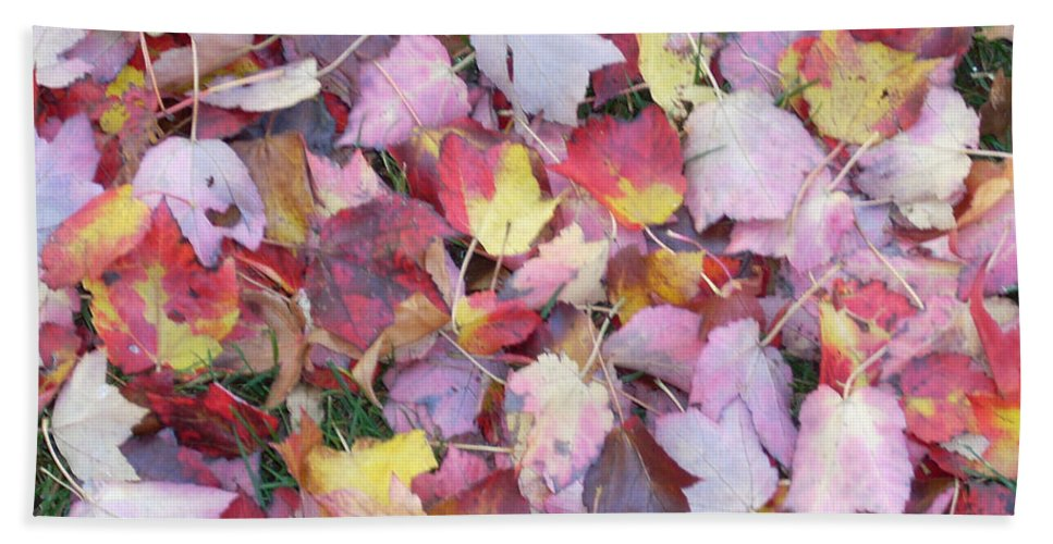 Beach Towel featuring the photograph Fall Carpet by Karin Dawn Kelshall- Best