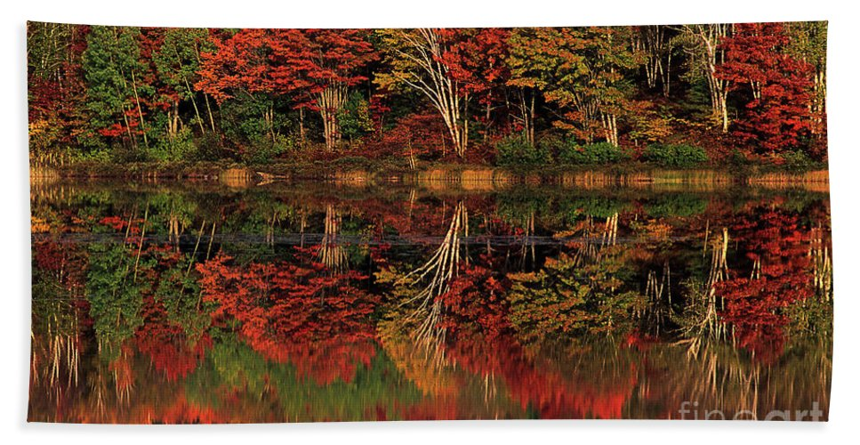Dave Welling Beach Towel featuring the photograph Fall Color Reflected In Thornton Lake Michigan by Dave Welling