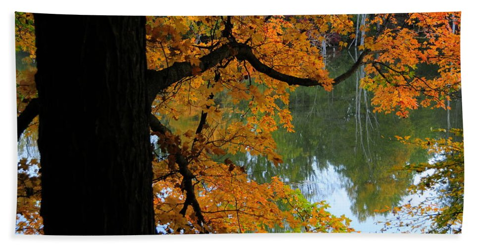 Tree Beach Towel featuring the photograph Fall Day At The Lake by David Arment