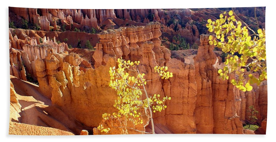 Bryce Canyon National Park Beach Towel featuring the photograph Fall In Bryce Canyon by Marty Koch