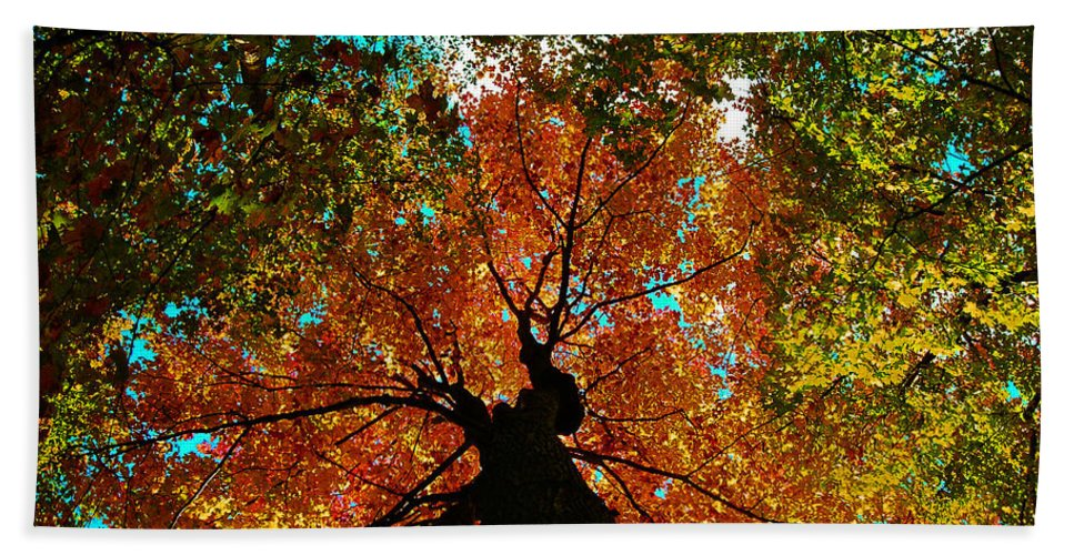 Season Beach Towel featuring the photograph Fall Leaves by Juergen Weiss