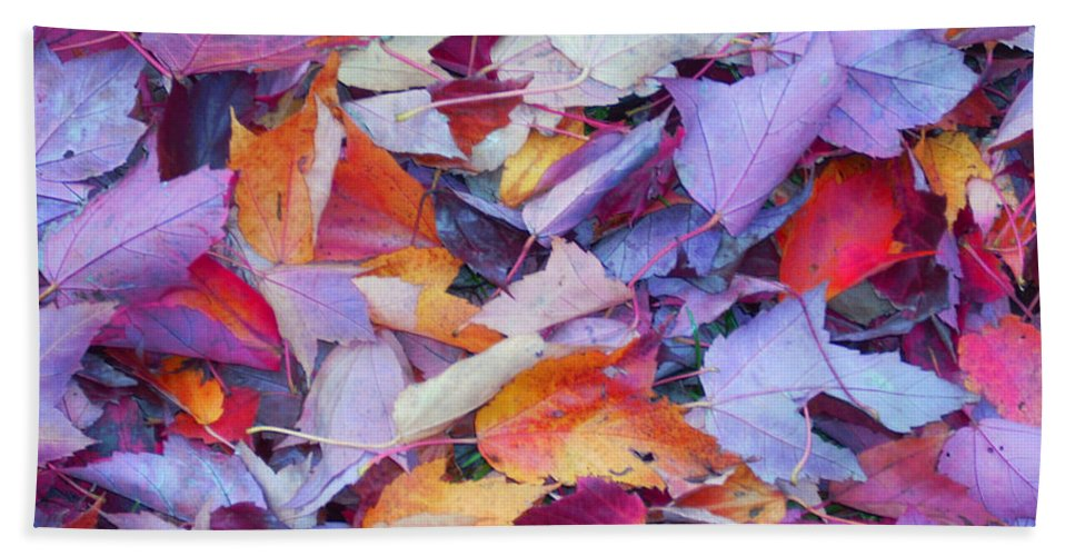 Beach Towel featuring the photograph Fall Purples by Karin Dawn Kelshall- Best